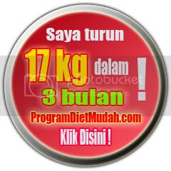 Program Diet Sehat